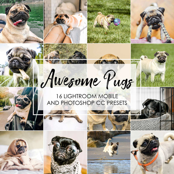 Awesome Pugs - Lightroom Presets