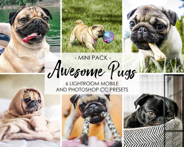 Awesome Pugs - Lightroom Presets For Dogs