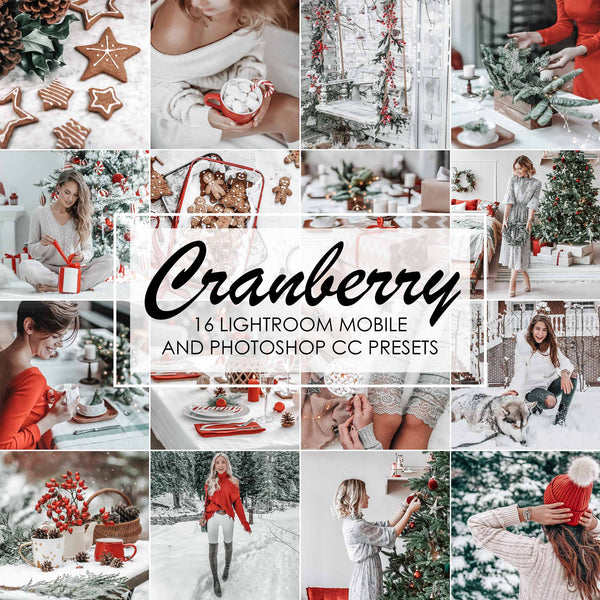 Cranberry White And Red Christmas Presets For Lightroom And Photoshop