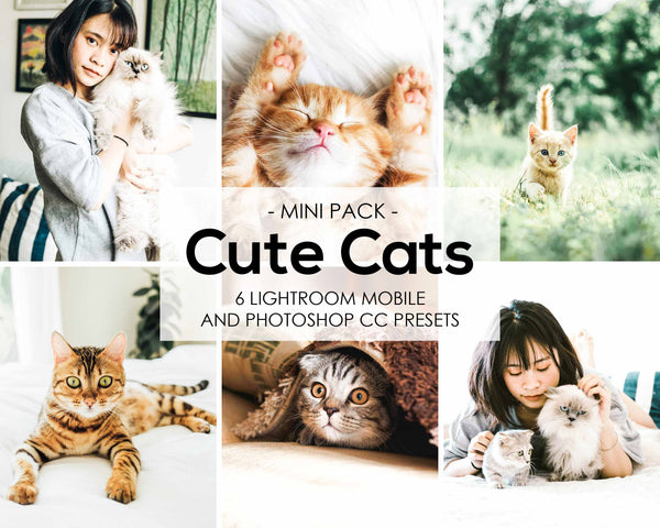 Cute Cats Lightroom Presets and Photoshop Desktop Presets