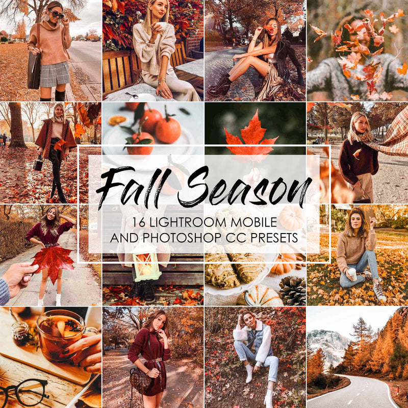 Fall Season Presets For Lightroom And Photoshop Autumn Presets
