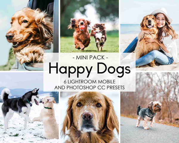 Happy Dogs Presets For Lightroom And Photoshop