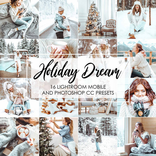 Holiday Dream Winter Presets For Lightroom