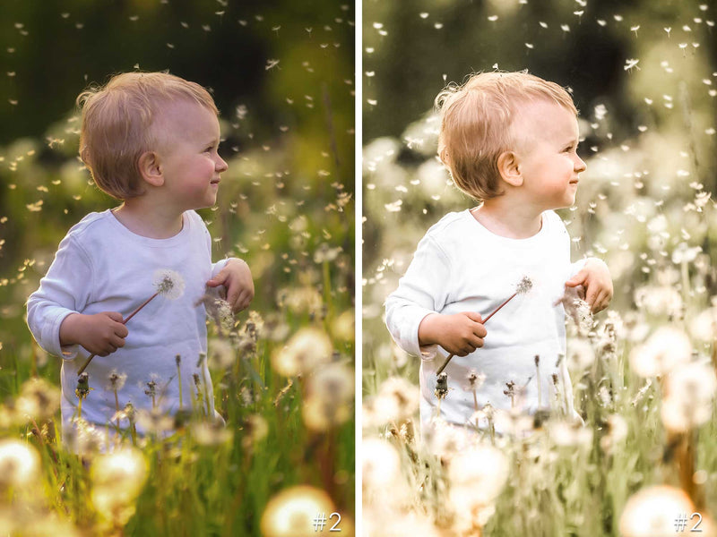 Little Wonder Children Presets For Lightroom And Photoshop
