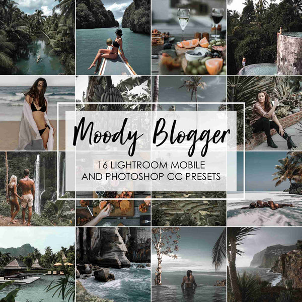 Moody Blogger Presets for Lightroom And Photoshop