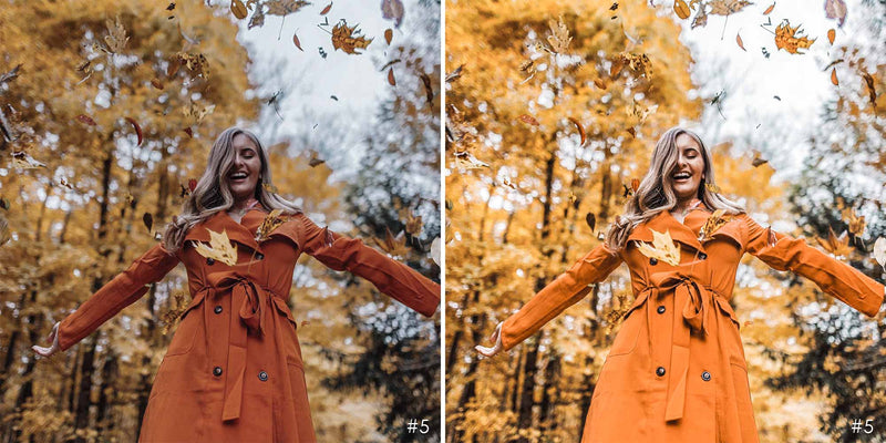 Pumpkin Pie Lightroom Presets For Halloween And Fall Season