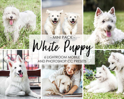 White Puppy Lightroom Presets For Mobile and Photoshop CC Filters
