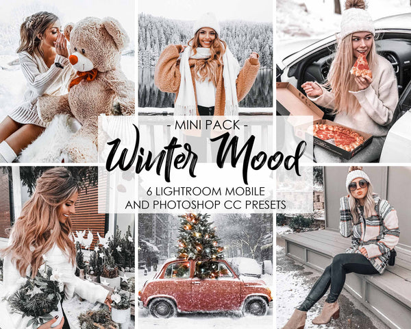 Winter Mood Presets For Adobe Lightroom And Photoshop