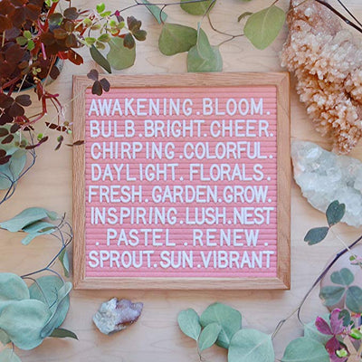"SAY IT! Felt Board Letter + Symbols 10""x10"" - Light Blue, Light Pink, Coral, Hot Pink - Daily Chic"