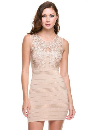 Underneath It All Embroidered Bodycon Dress - Dusty Pink - Daily Chic