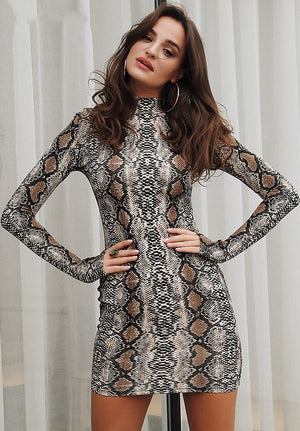 Vanessa Snake Print Turtleneck Dress - Print - Daily Chic