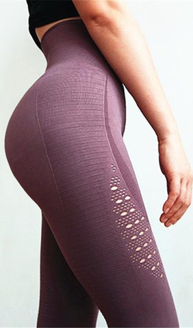 Energy Cutout Seamless Yoga Pants - Plum, Burgundy, Black, Light Olive - Daily Chic