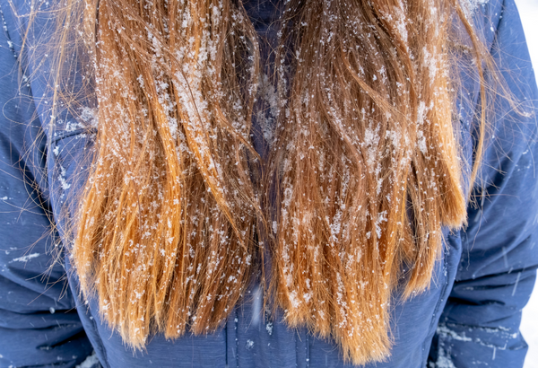 best products winter proof hair