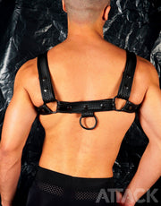 HARNESS FUSEL BLACK CHEST(new edition)