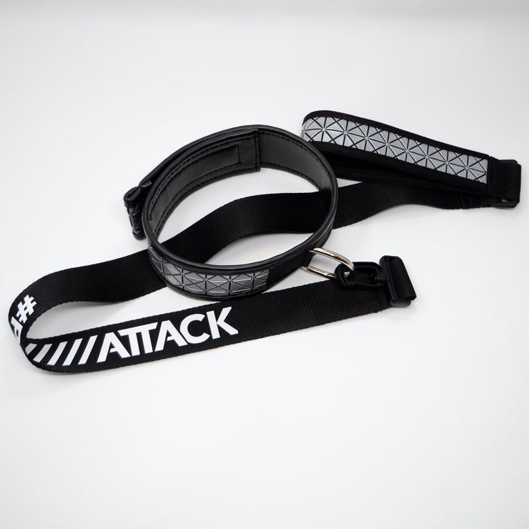 DOG COLLAR AND LEASH > SILVER SPIKES