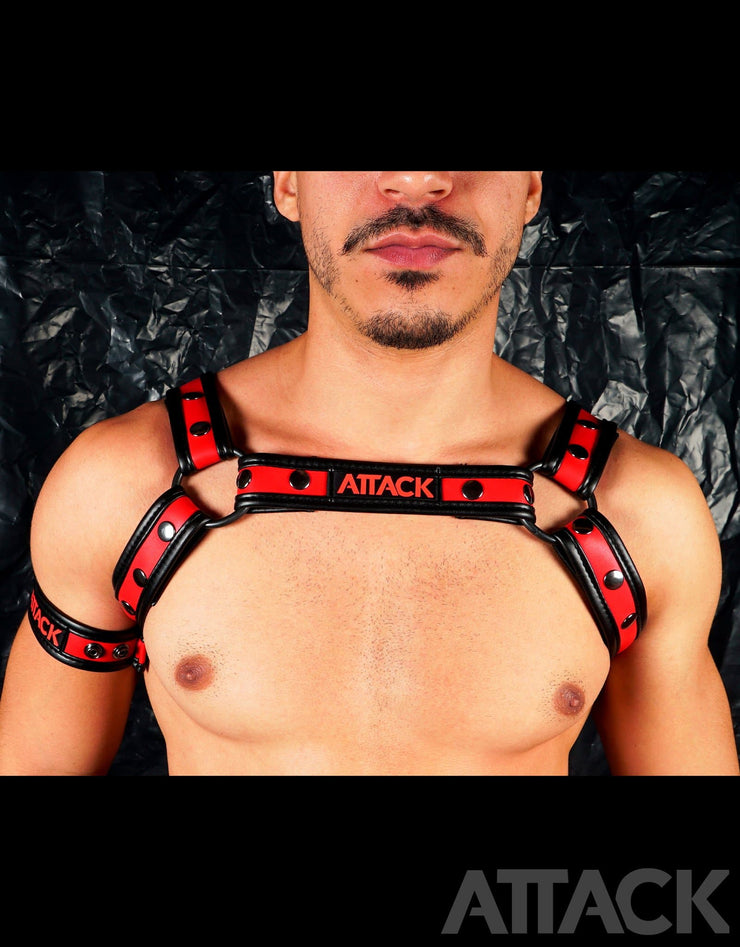 HARNESS RED CHEST