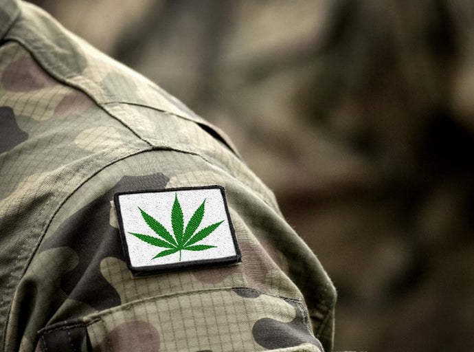 Should Veterans Smoke Weed?