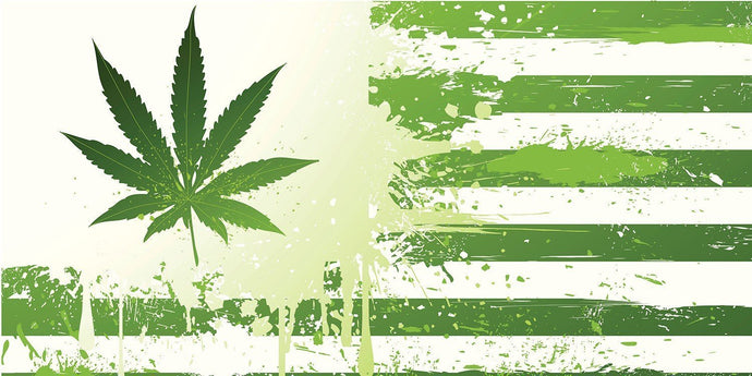 Will the First Congressional Cannabis Hearing of 2019 End Prohibition?