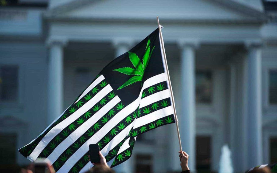 Washington D.C. Funding for Cannabis Legalization Barred in 2019