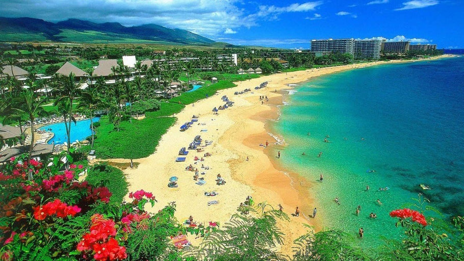 How Close is Hawaii to Being the Next State to Legalize Adult Cannabis?