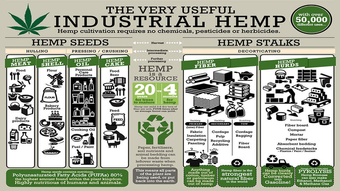Can Industrial Hemp Cultivation Begin Despite the Government Shutdown?