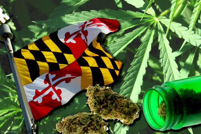 Maryland Officially Legalizes Cannabis - Is your State Next?