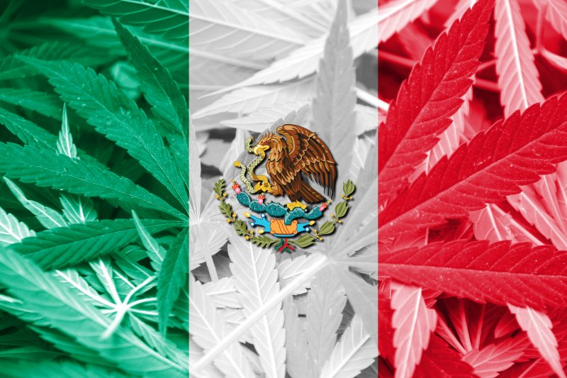Mexico Calls the Global Cannabis Community for Legalization Tips