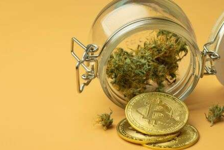 Is Cryptocurrency A Convenient Payment Option for Cannabis Merchants?