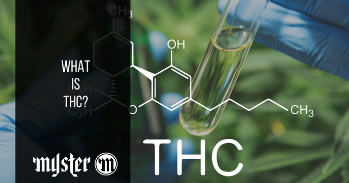 What Is THC, And What's It Used For?