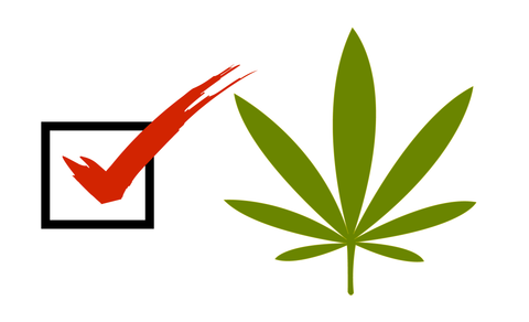 Cannabis Vote nomination