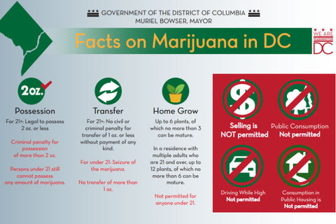 Marijuana Laws in DC