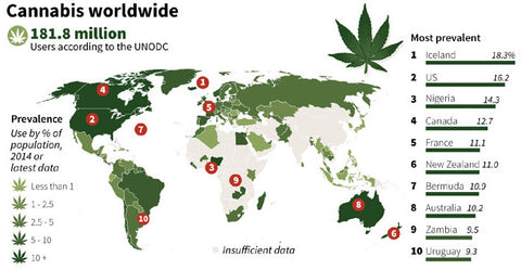 Cannabis worldwide graph