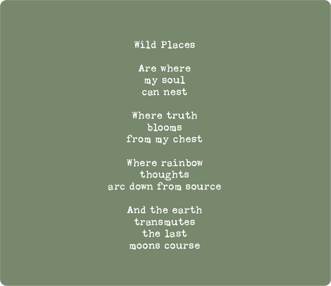 Wild Places, a poem by Shannon Ross