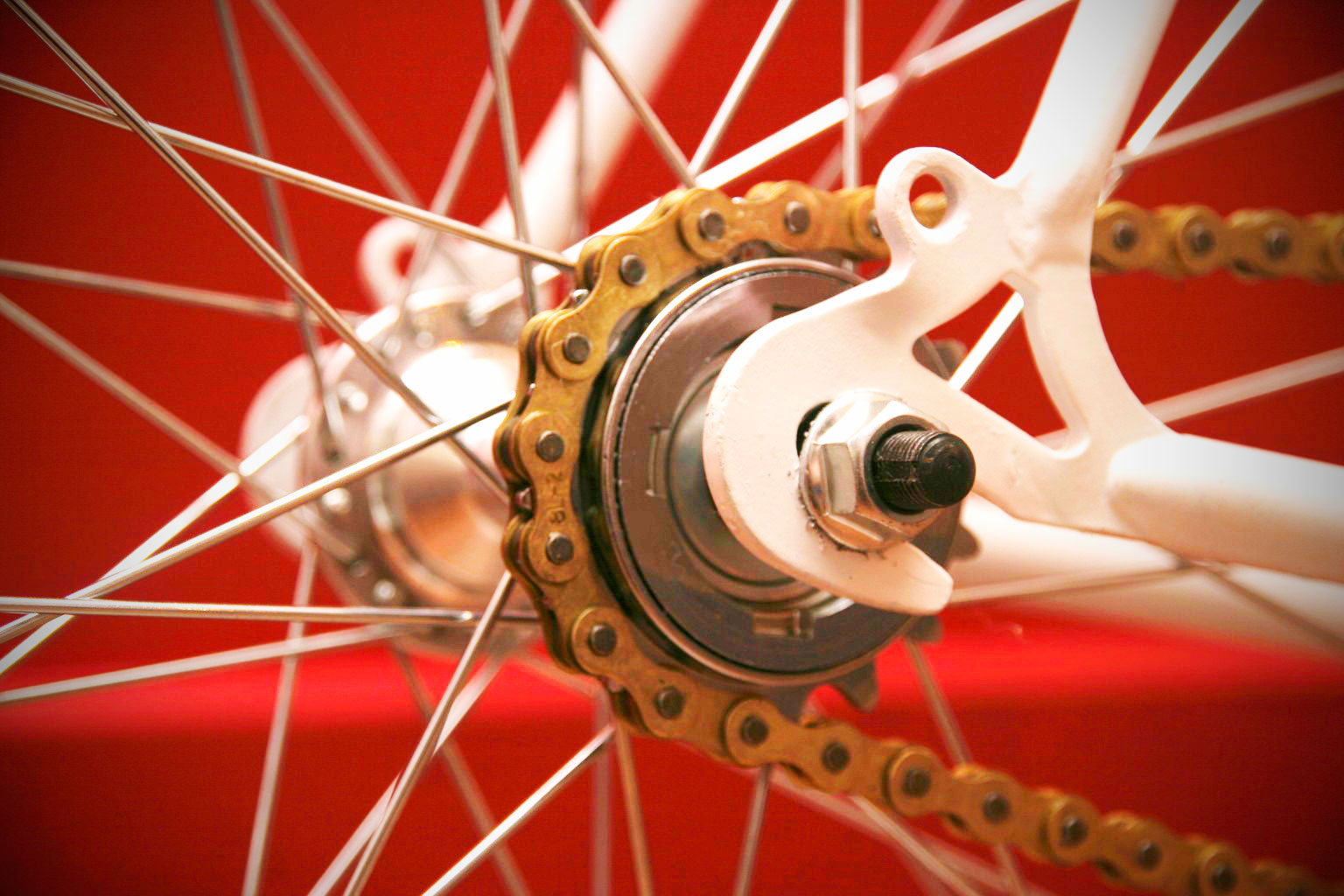 single speed conversion hub with freewheel