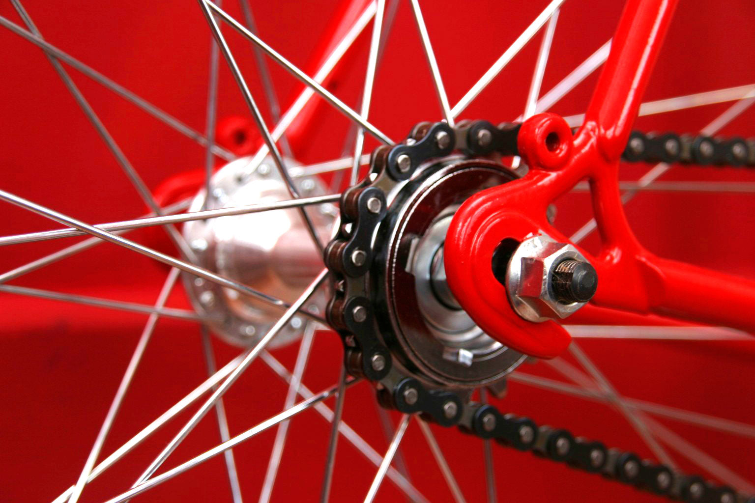 single speed freewheel