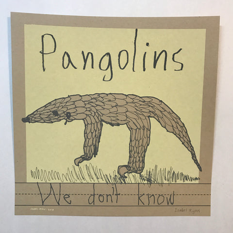 Pangolins: We Don't Know (by Isabel Ryan)