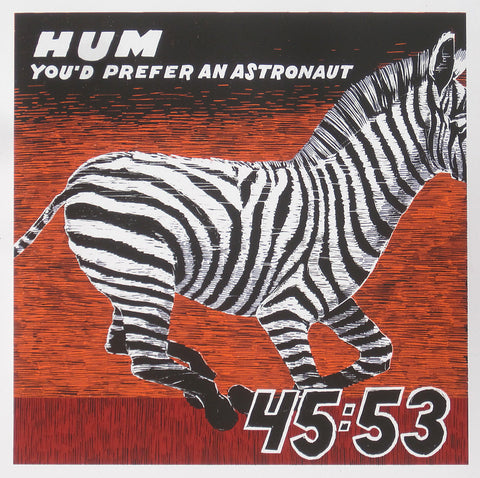 Hum - You'd Prefer an Astronaut