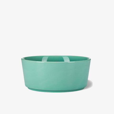 Simple Solid Dog Bowl Mint