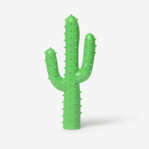 Silly Succulent Cactus Dog Toy