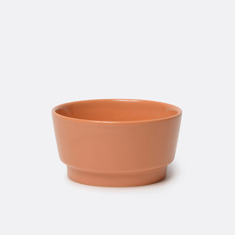 Gloss Ceramic Dog Bowl Rust