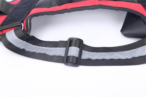 Personalized reflective dog harness