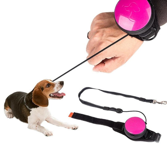 best pink hands free leash for small dogs