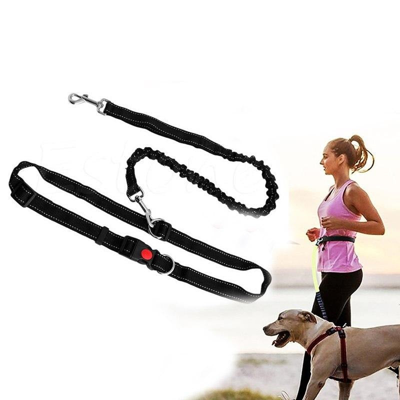 hands free leashes for running