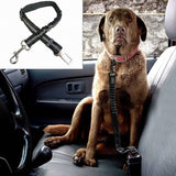 Bungee Dog Seatbelt