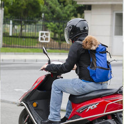 dog backpack carrier for bike, motorbike and scooter