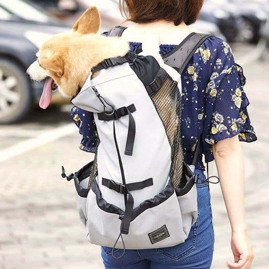 grey dog backpack carrier for small dogs