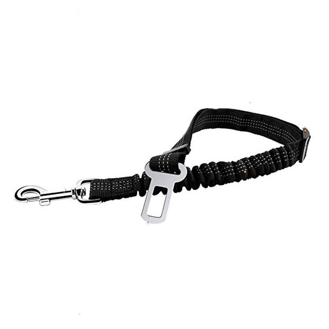 dog seat belt without harness