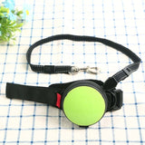 green hands free leash for training