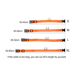 Best led light up dog collar for nights size chart