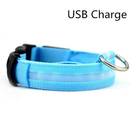 Blue led USB light up dog collar for nights